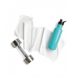 Carmel Towel Company C710 Chill Towel